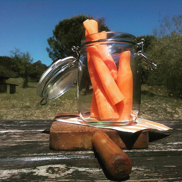 Ideas para picnics 4