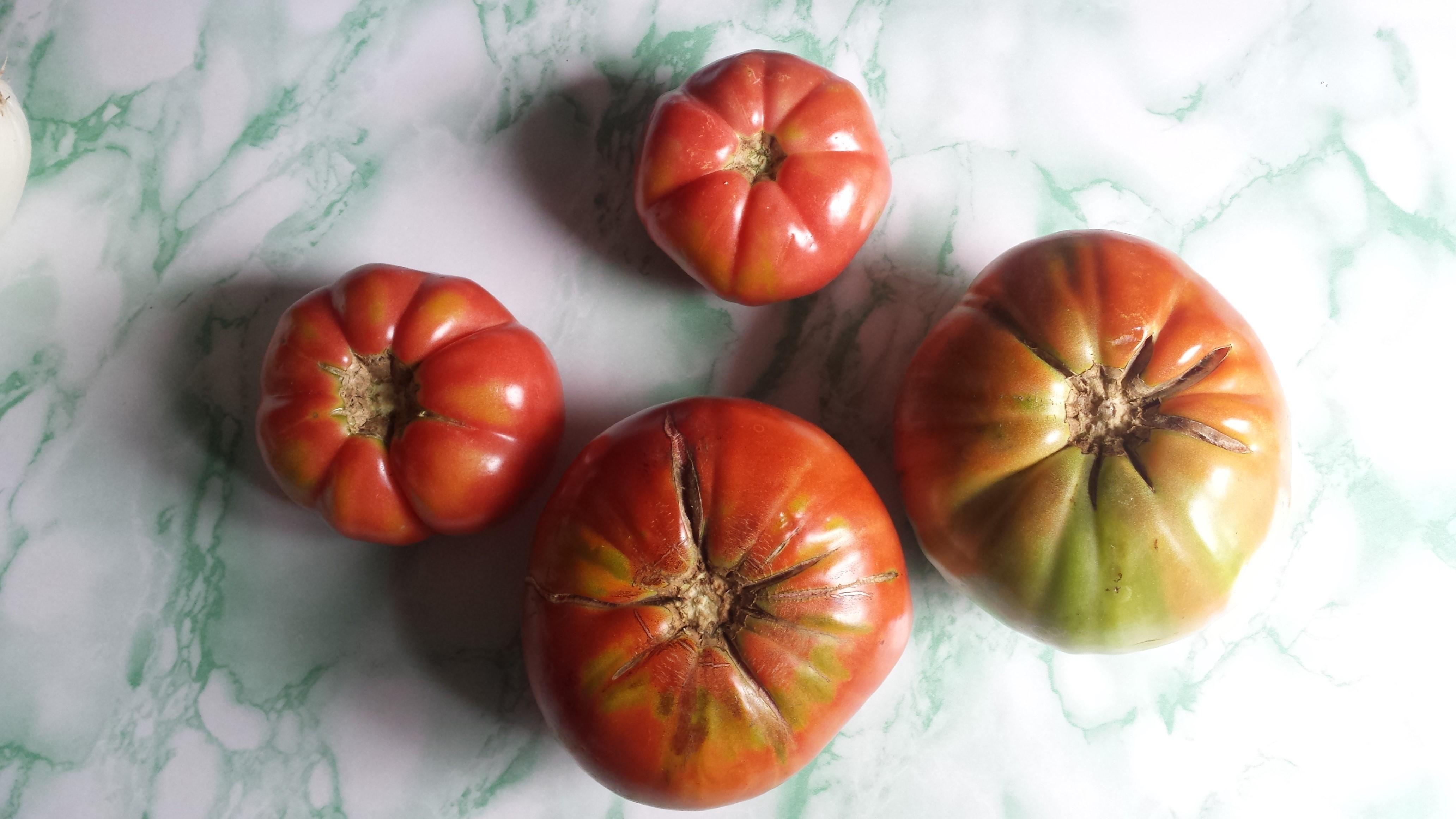 La Huerta de Rizos Tomates 2